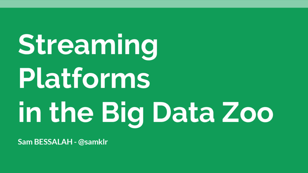 Streaming Platforms in the Big Data Zoo Sam BES...