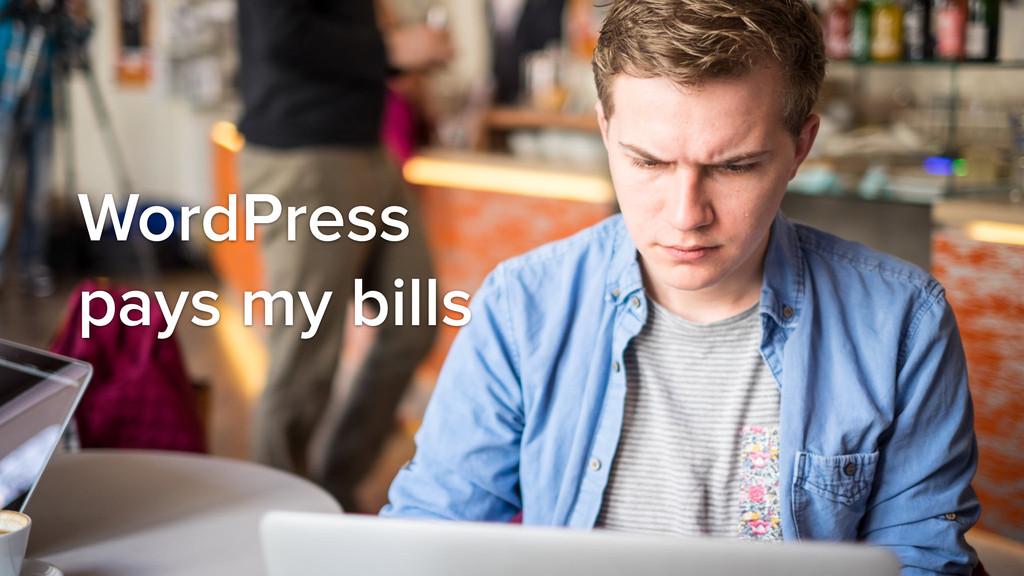 WordPress pays my bills