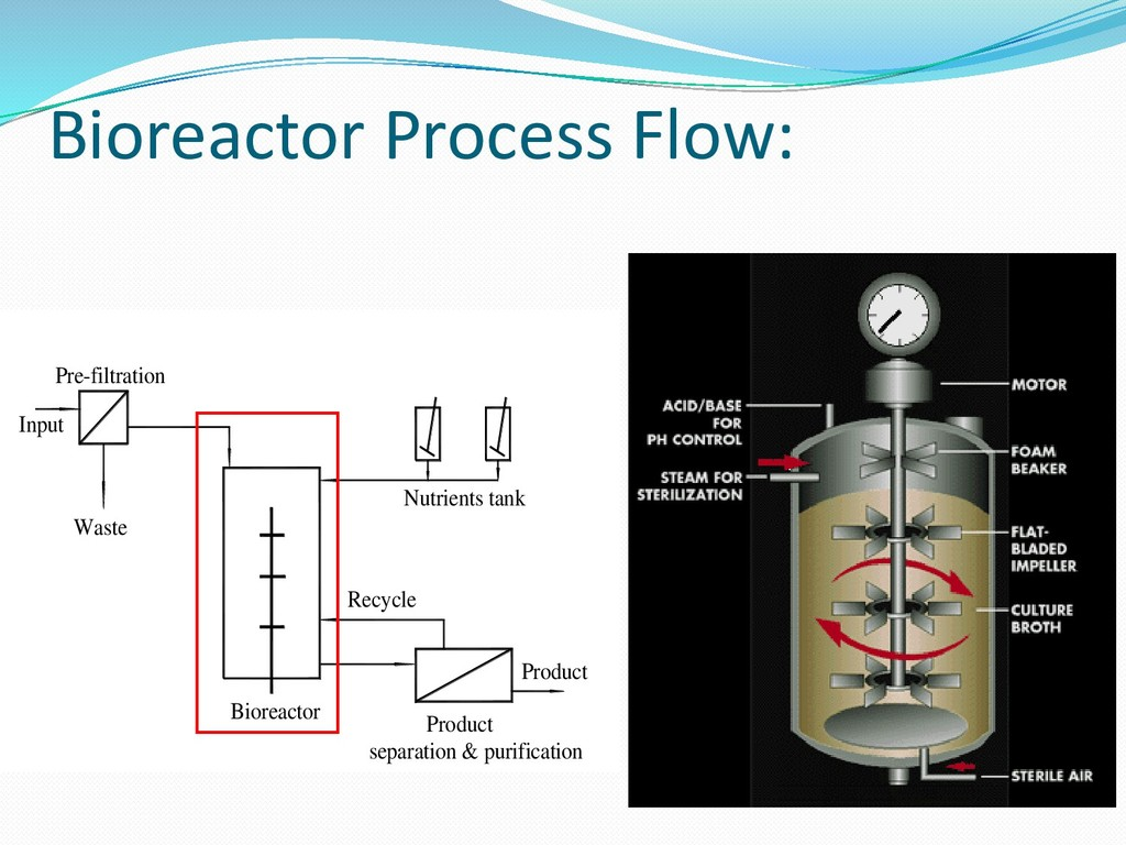 Bioreactor Process Flow: Product Bioreactor Rec...