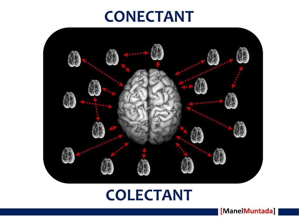CONECTANT COLECTANT