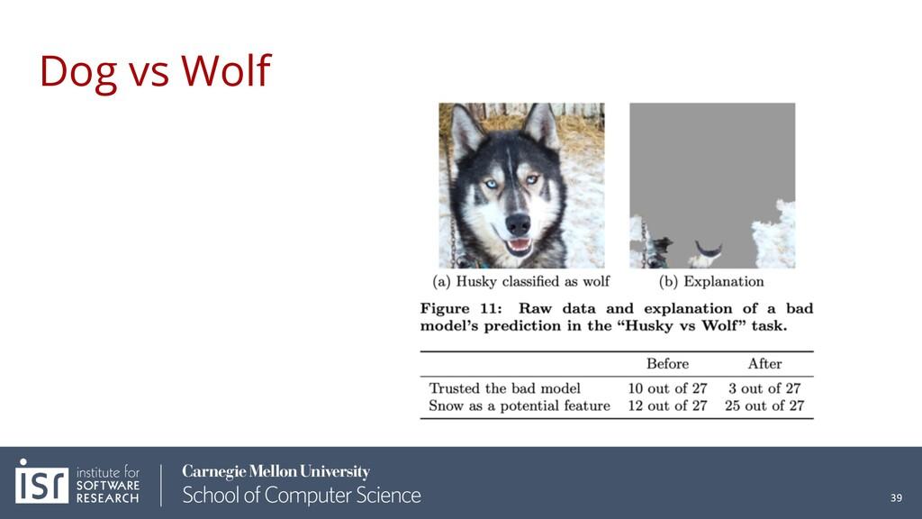 Dog vs Wolf 39