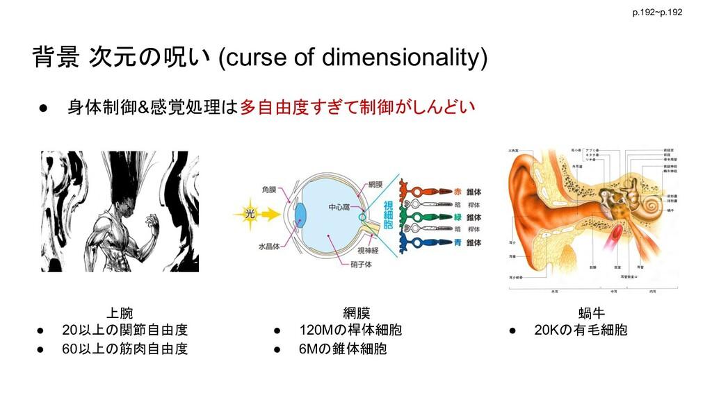背景 次元の呪い (curse of dimensionality) ● 身体制御&感覚処理は...