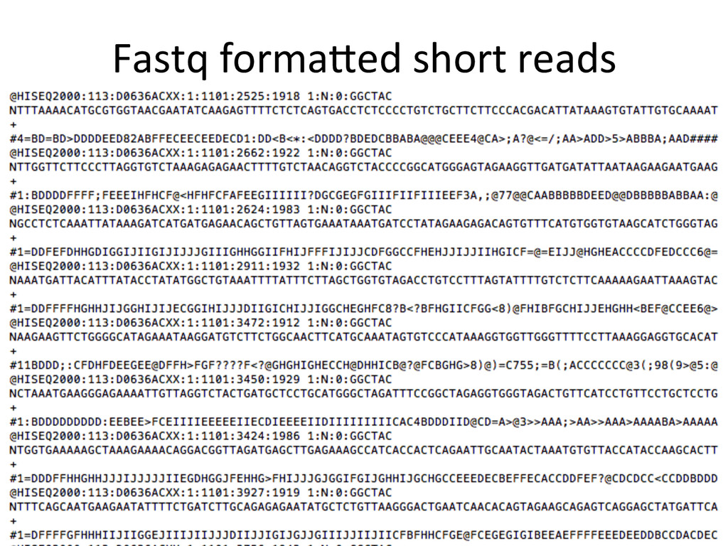 Fastq	