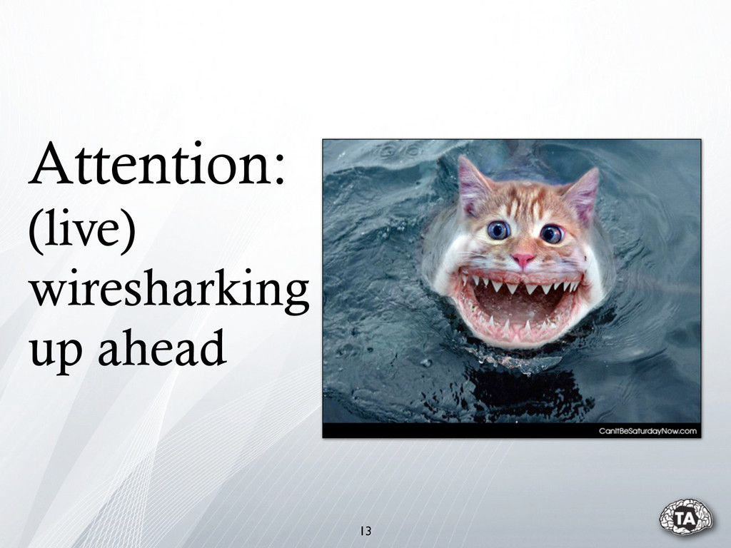 Attention: (live) wiresharking up ahead 13