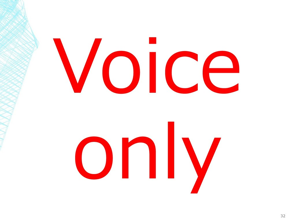 32 Voice only