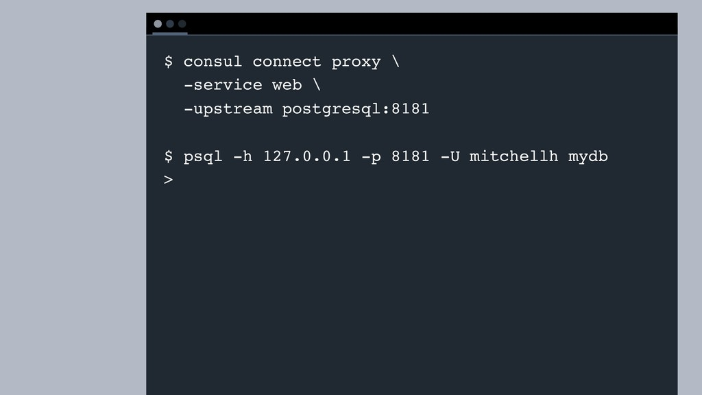 T E R M I N A L $ consul connect proxy \ -servi...