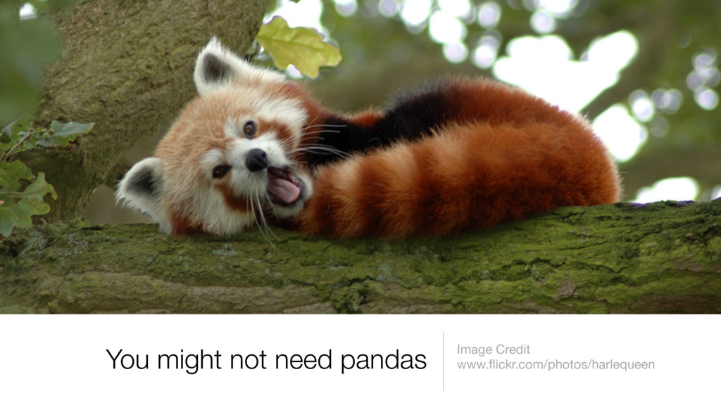 You might not need pandas Image Credit www.flick...
