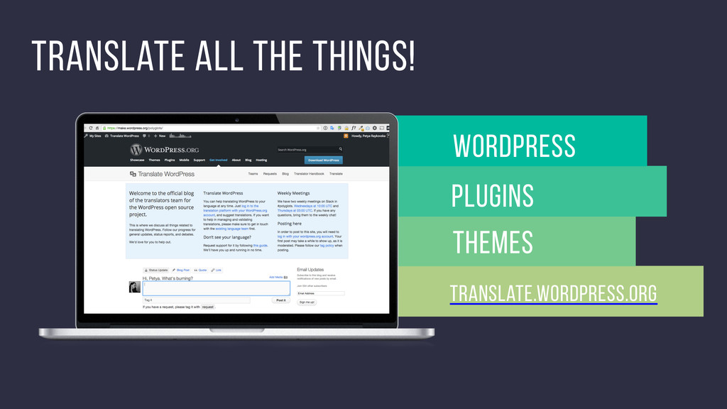 Translate all the things! Themes WordPress Plug...
