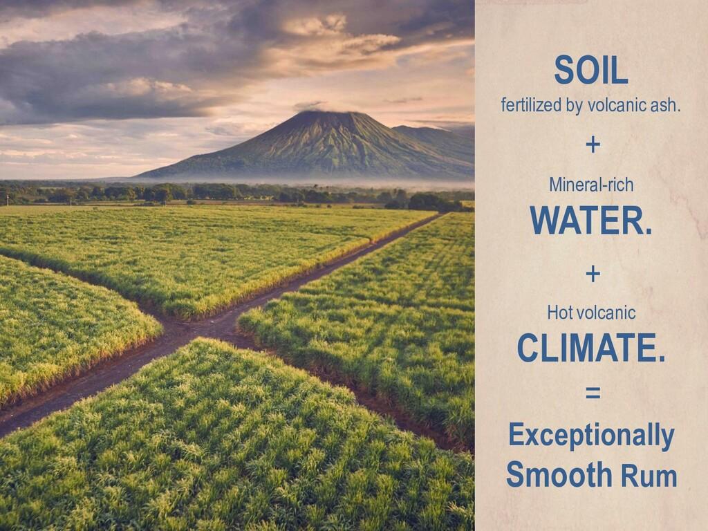 SOIL fertilized by volcanic ash. Mineral-rich W...