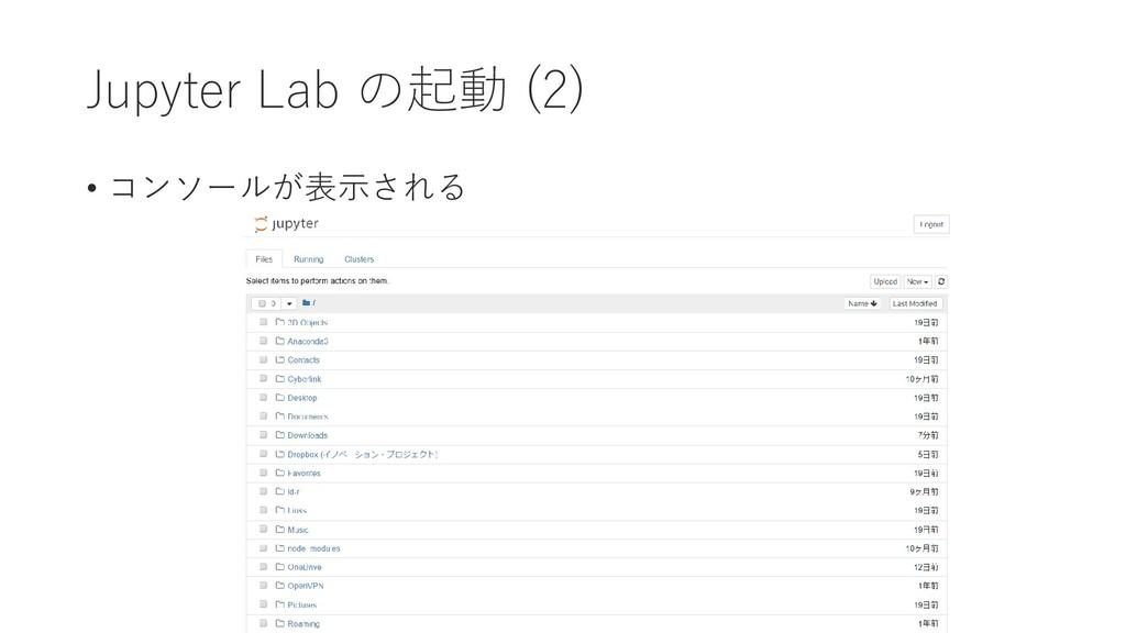 Jupyter Lab の起動 (2) • コンソールが表示される