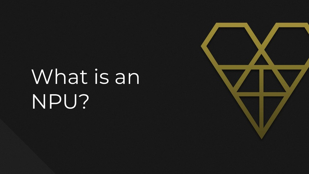 What is an NPU?