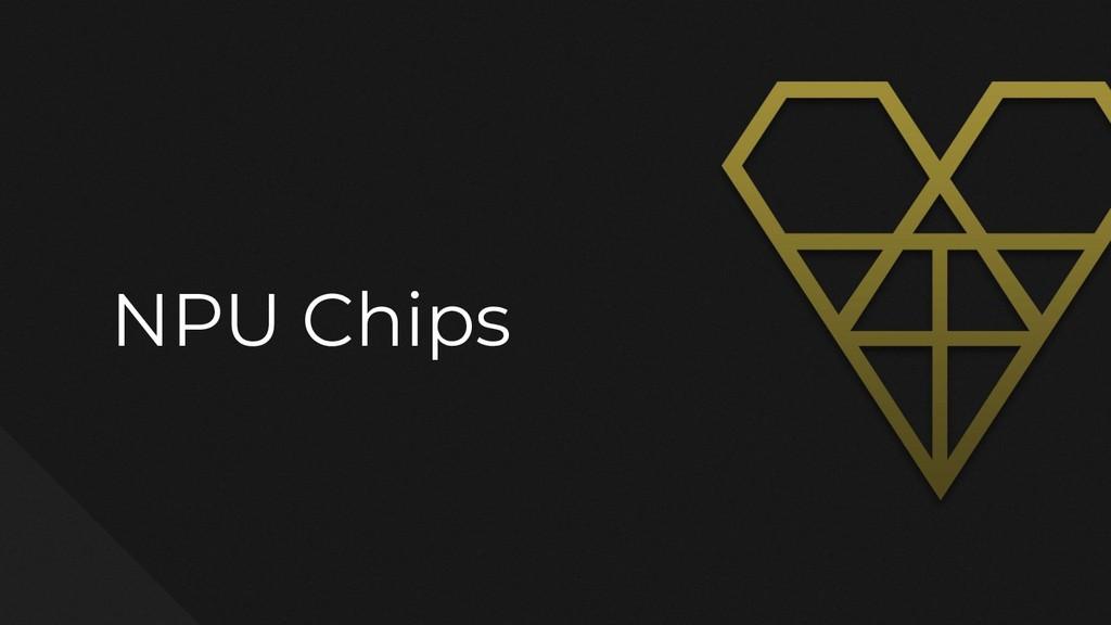NPU Chips
