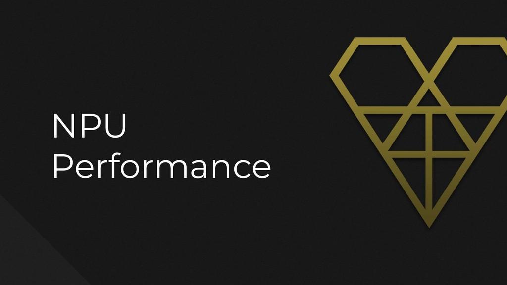 NPU Performance
