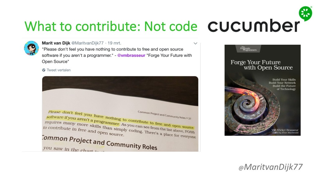 What to contribute: Not code @MaritvanDijk77