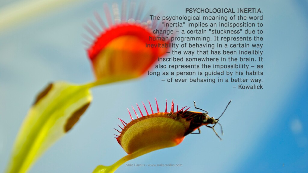 PSYCHOLOGICAL INERTIA. The psychological meanin...