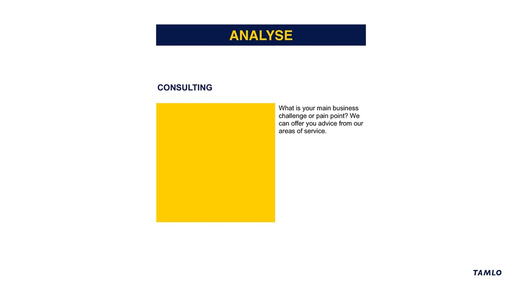 CONSULTING ANALYSE What is your main business c...