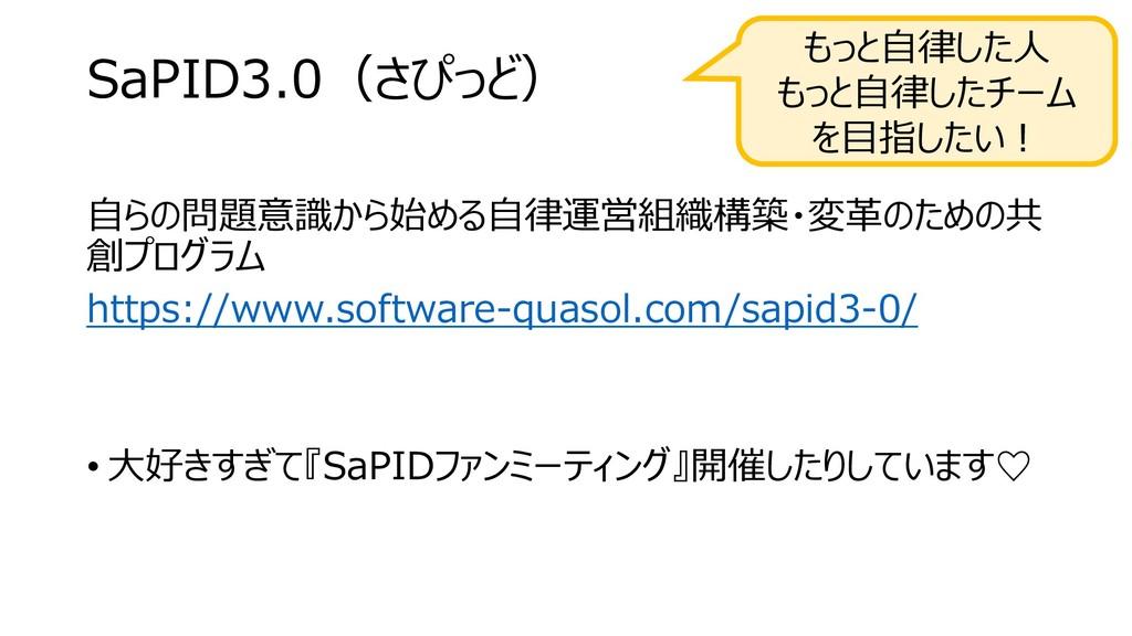 SaPID3.0(さぴっど) 自らの問題意識から始める自律運営組織構築・変革のための共 創プロ...