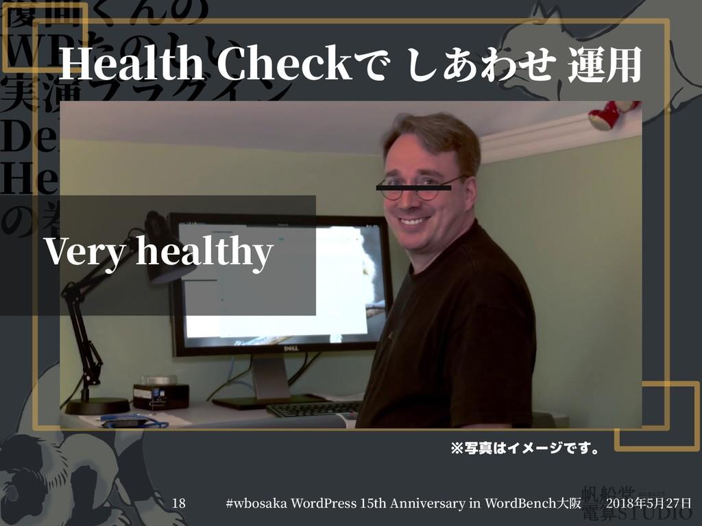 覆面くんのくんの WPたのしい 実演プラグイン Debug Barと Health Check...
