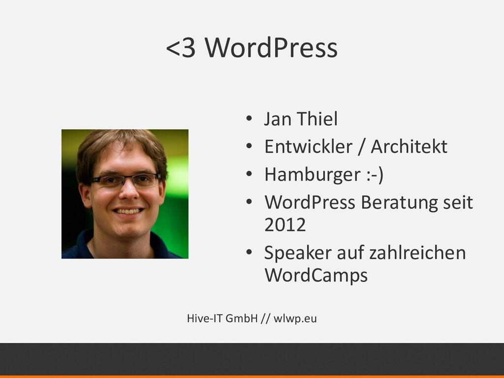 <3 WordPress • Jan Thiel • Entwickler / Archite...