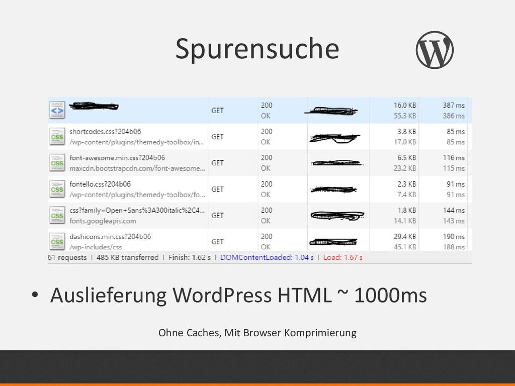 Spurensuche • Auslieferung WordPress HTML ~ 100...