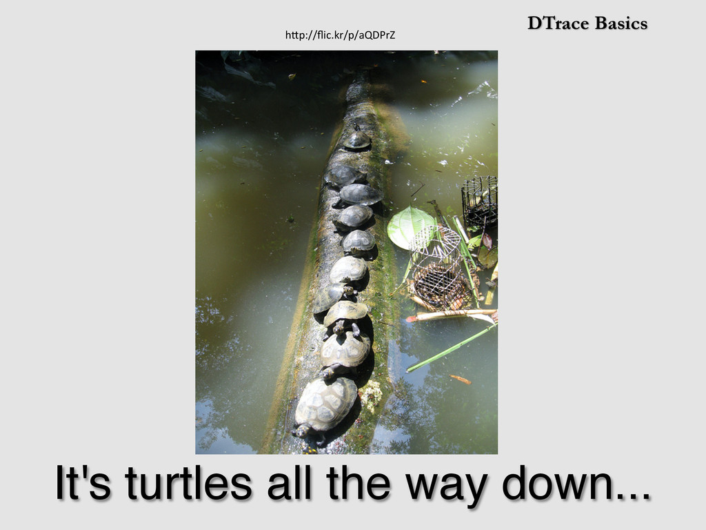 DTrace Basics It's turtles all the way down...!...