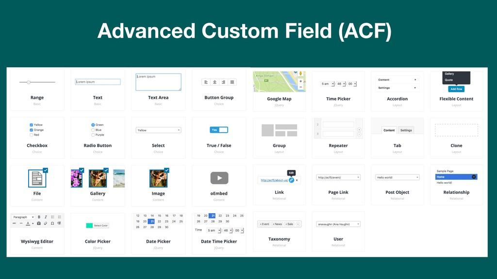 Advanced Custom Field (ACF)