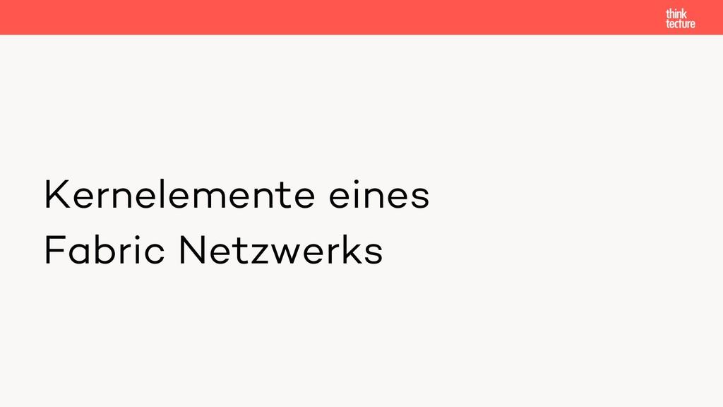 Kernelemente eines Fabric Netzwerks