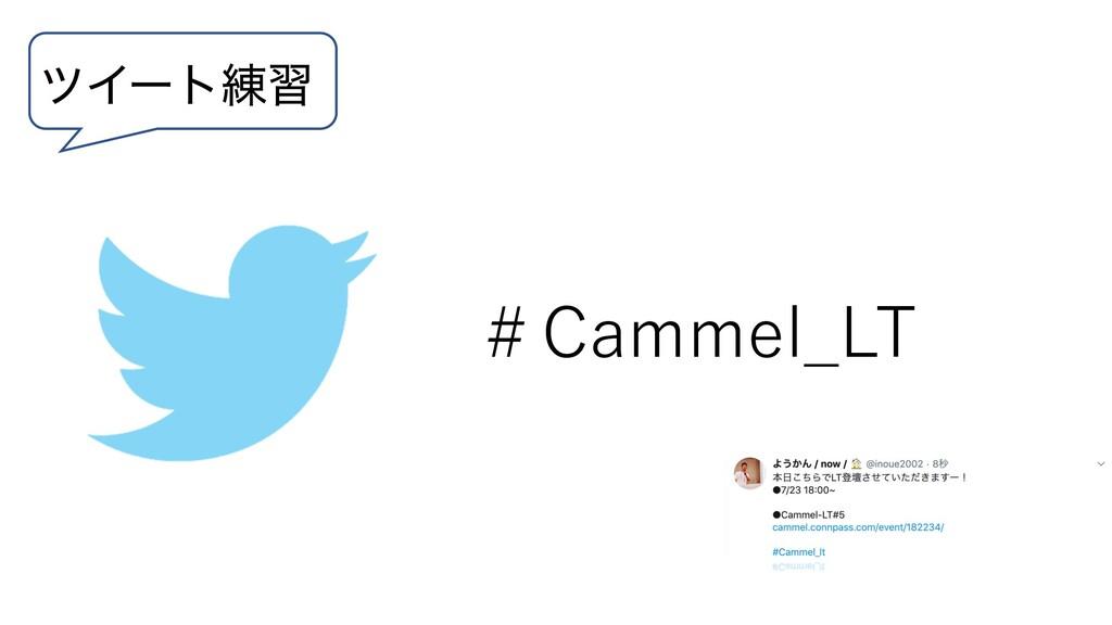 πΠʔτ࿅श #Cammel_LT