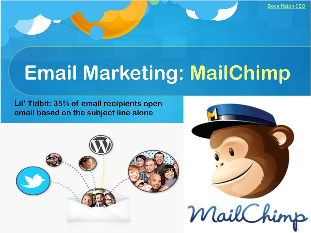 Boca Raton SEO Email Marketing: MailChimp Lil' ...