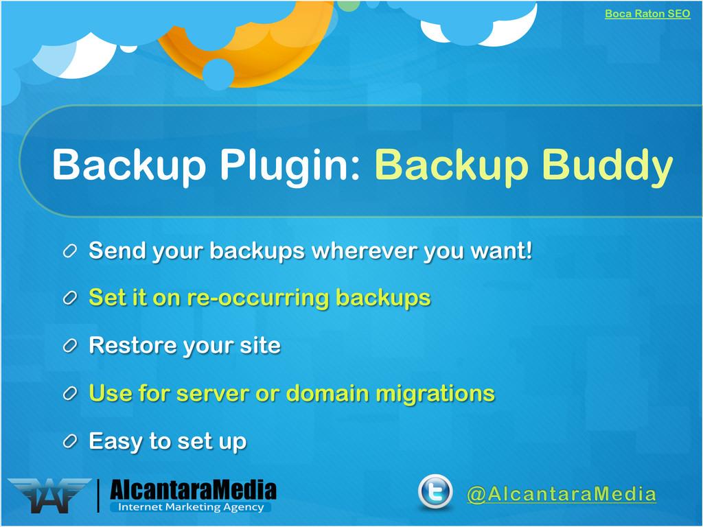 Boca Raton SEO Backup Plugin: Backup Buddy !  ...