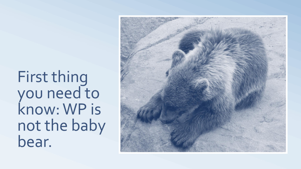 First thing you need to know: WP is not the bab...