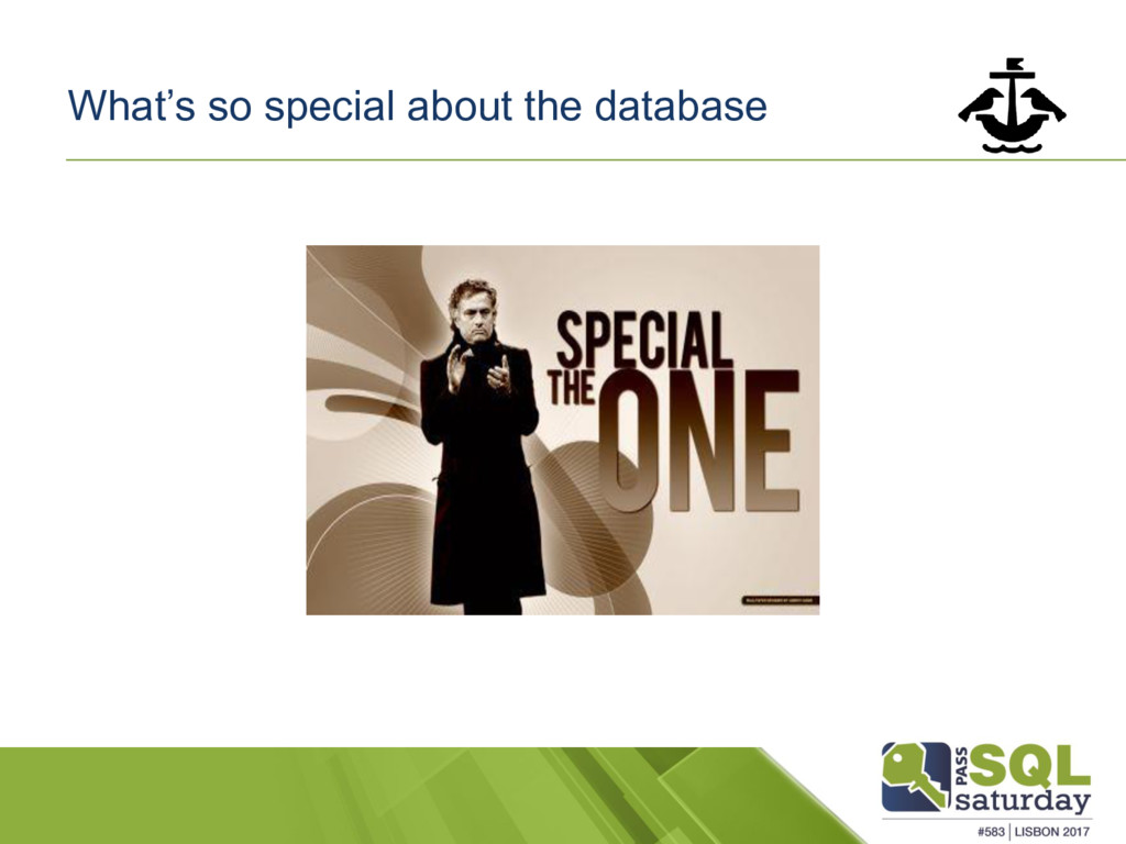 What's so special about the database
