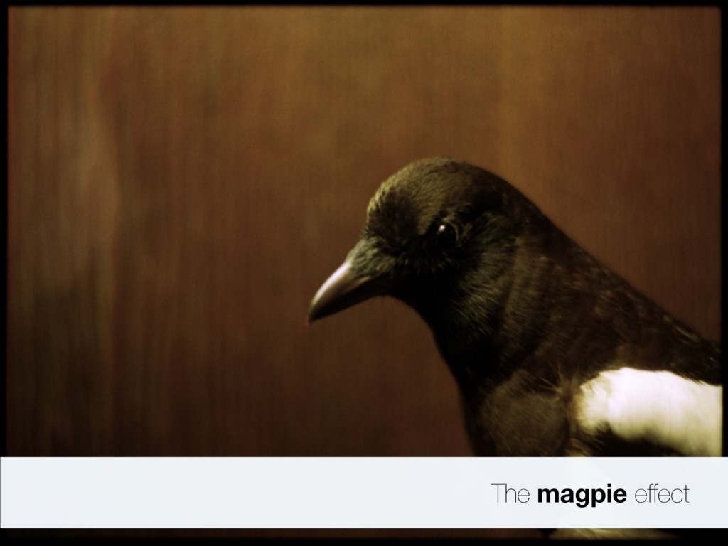 The magpie effect