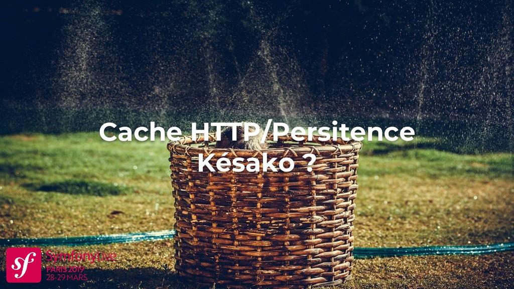 Cache HTTP/Persitence Késako ?