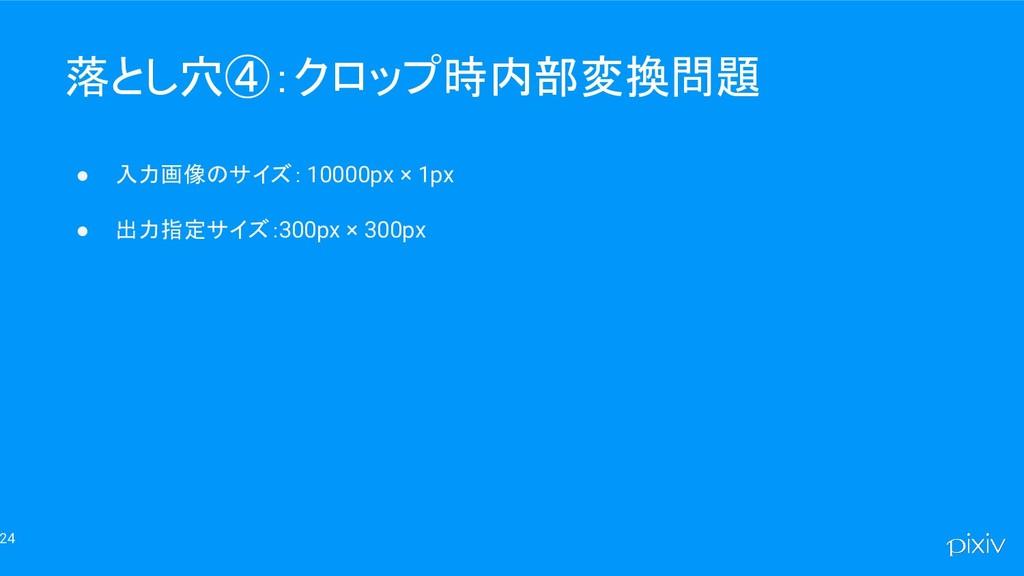 24 落とし穴④:クロップ時内部変換問題 ● 入力画像のサイズ: 10000px × 1px ...