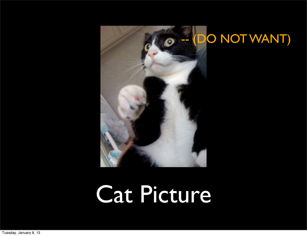 Cat Picture -- (DO NOT WANT) Tuesday, January 8...