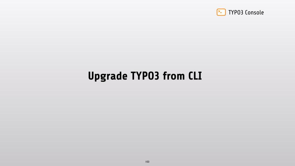 TYPO3 Console Upgrade TYPO3 from CLI 103