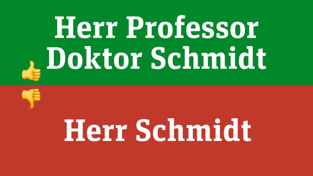 Herr Professor Doktor Schmidt Herr Schmidt