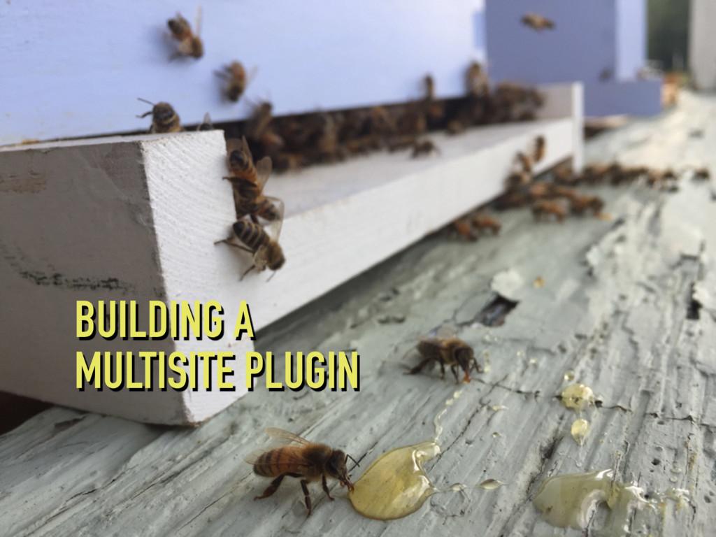 BUILDING A MULTISITE PLUGIN
