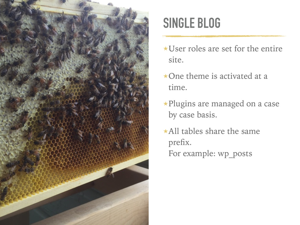 SINGLE BLOG ★User roles are set for the entire ...