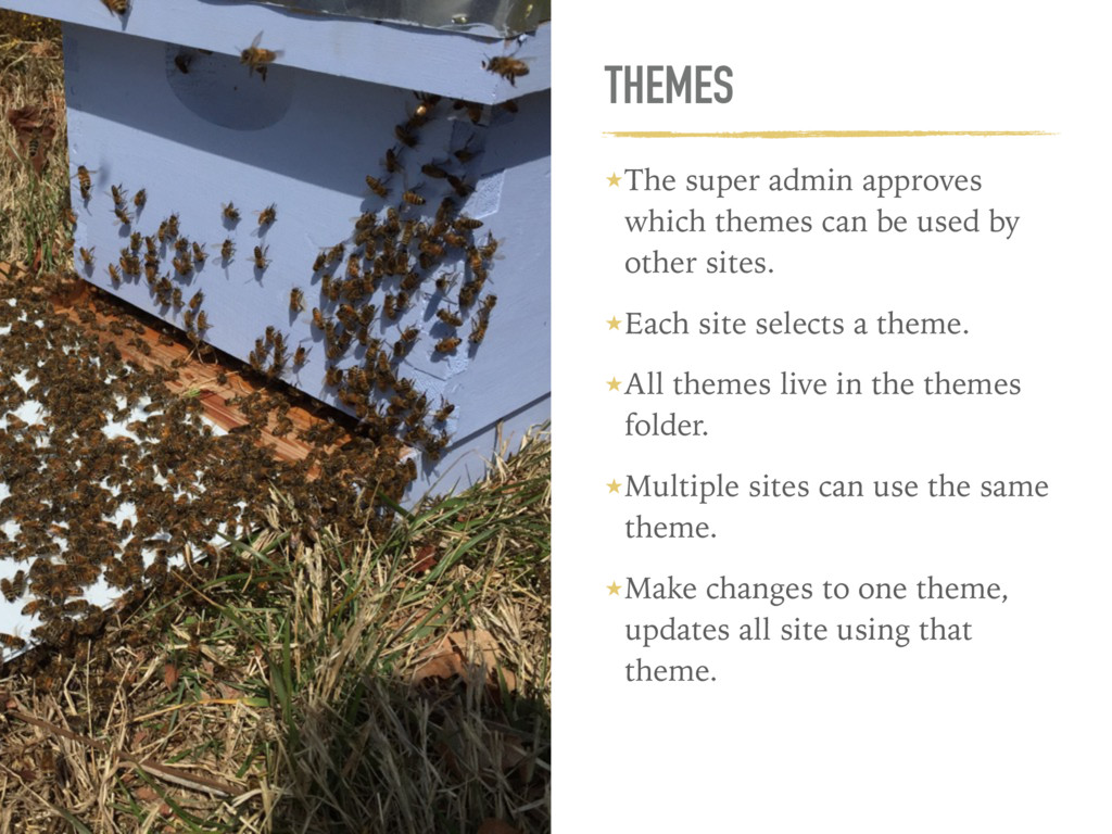 THEMES ★The super admin approves which themes c...