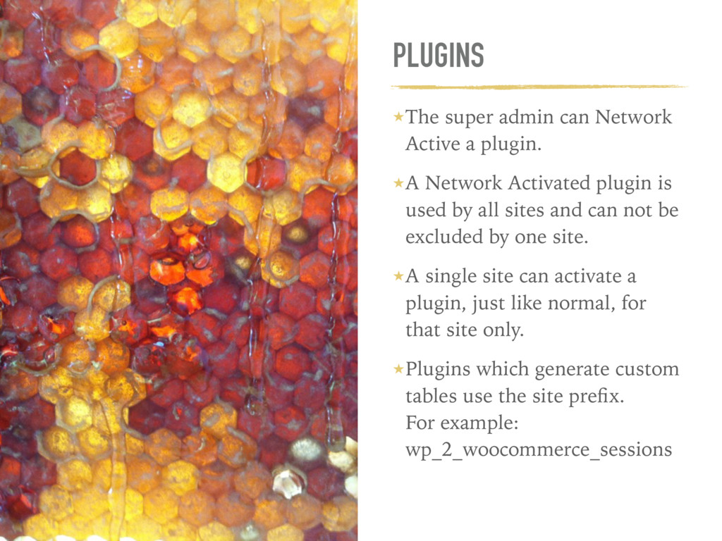 PLUGINS ★The super admin can Network Active a p...