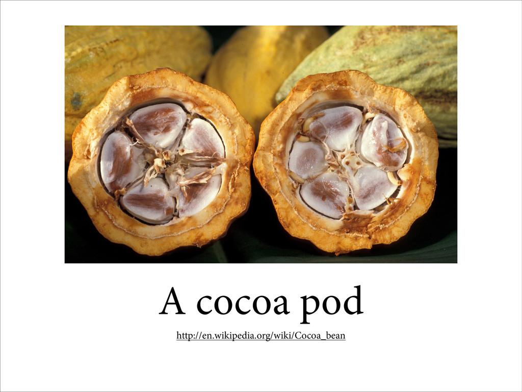 A cocoa pod http://en.wikipedia.org/wiki/Cocoa_...