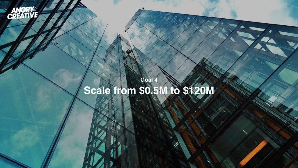 Goal 4  Scale from $0.5M to $120M