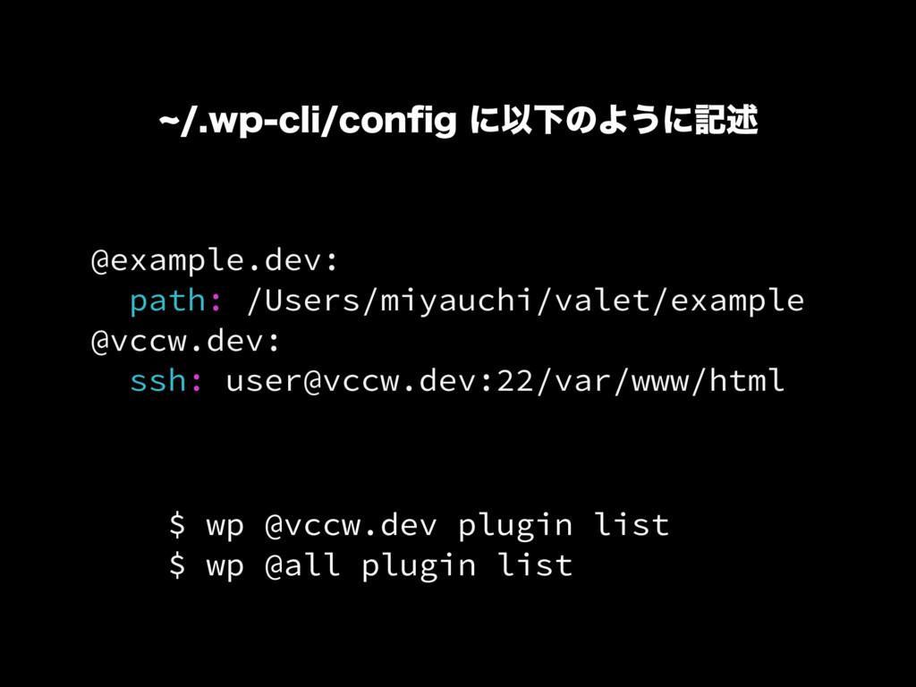 @example.dev: path: /Users/miyauchi/valet/examp...