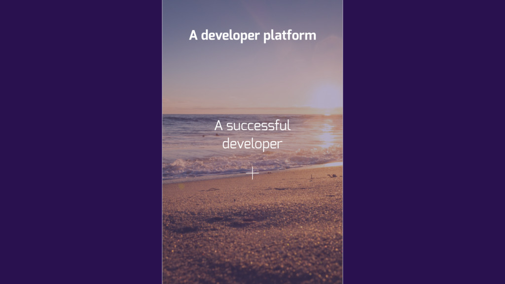 A developer platform A successful developer