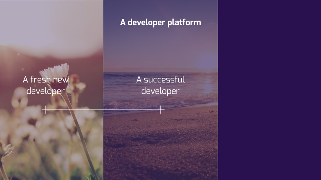 A developer platform A successful developer A f...