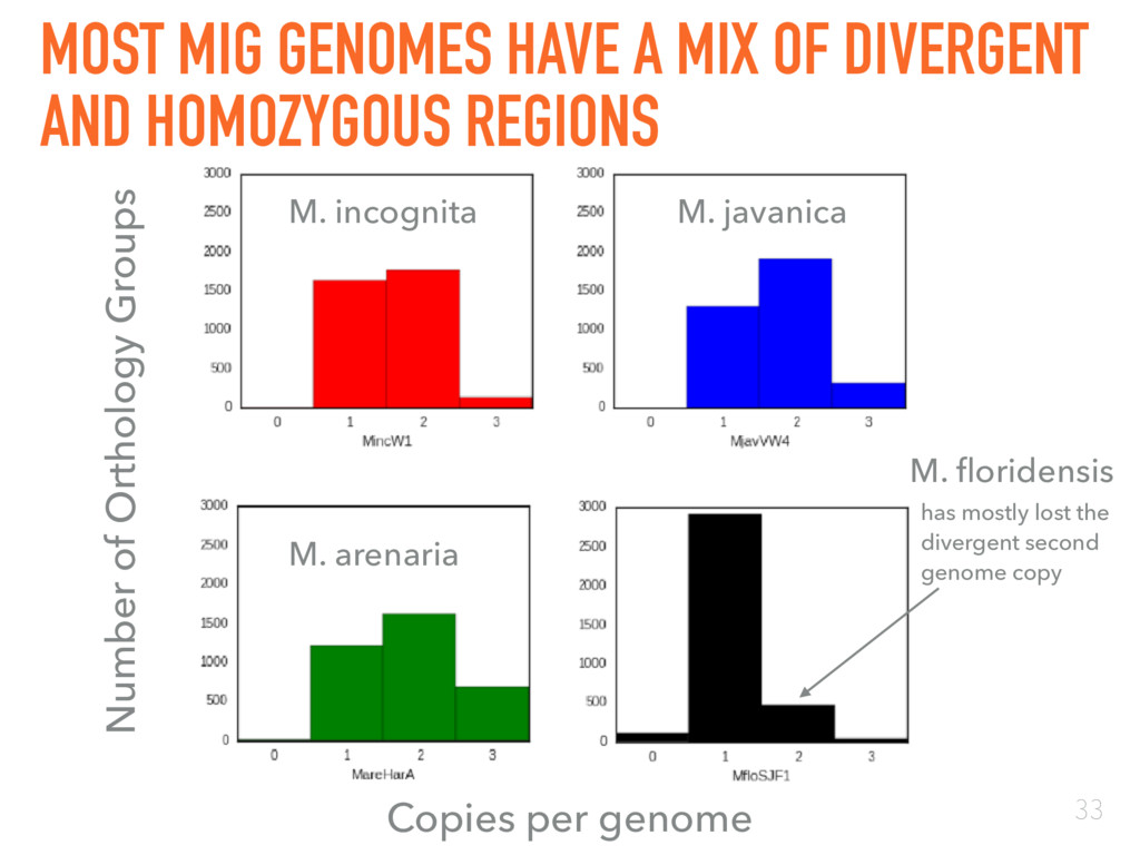 MOST MIG GENOMES HAVE A MIX OF DIVERGENT AND HO...
