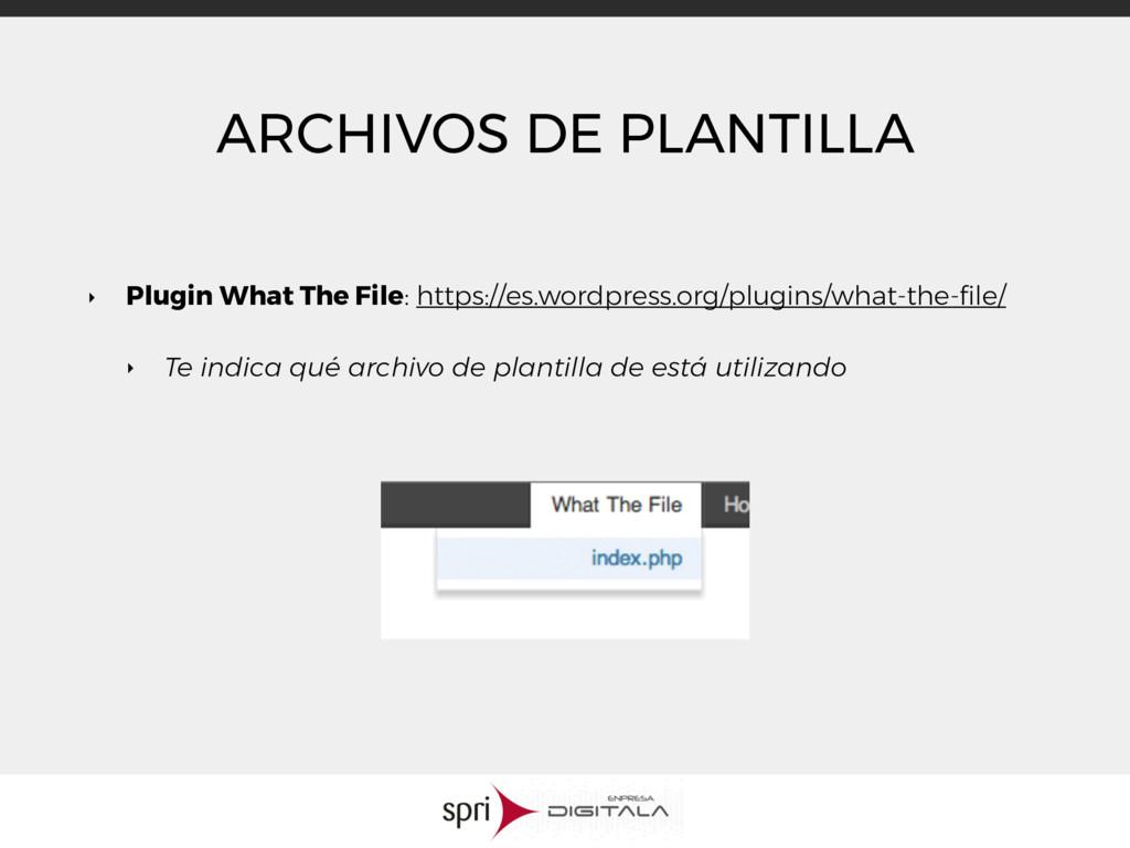 ARCHIVOS DE PLANTILLA ‣ Plugin What The File: h...