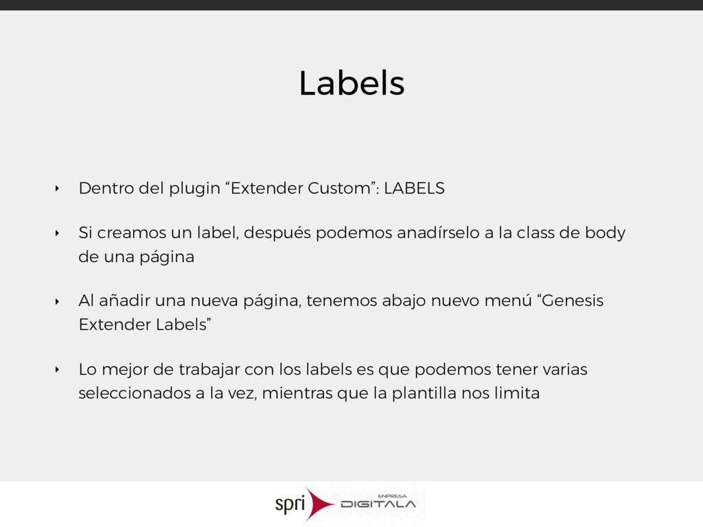 """Labels ‣ Dentro del plugin """"Extender Custom"""": L..."""